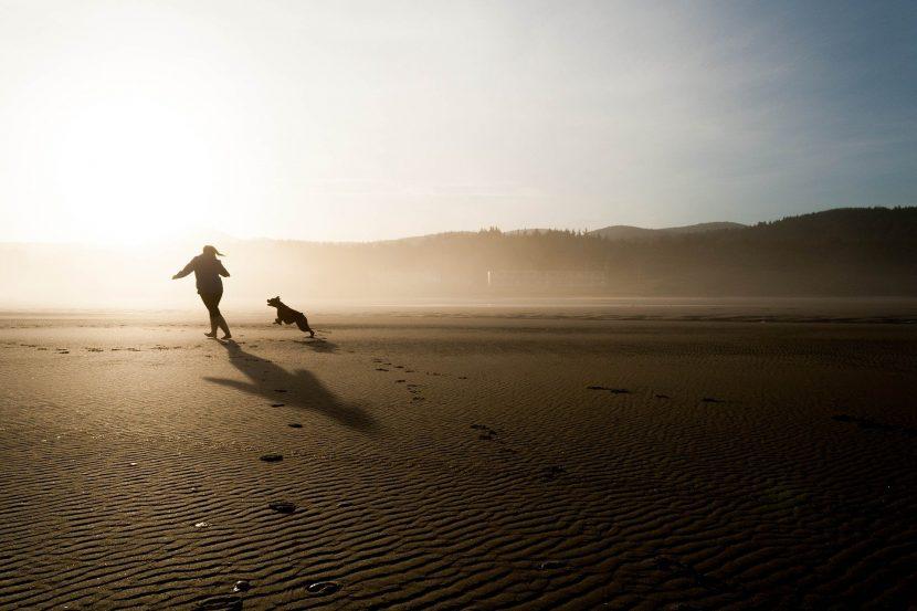 Courir avec chien
